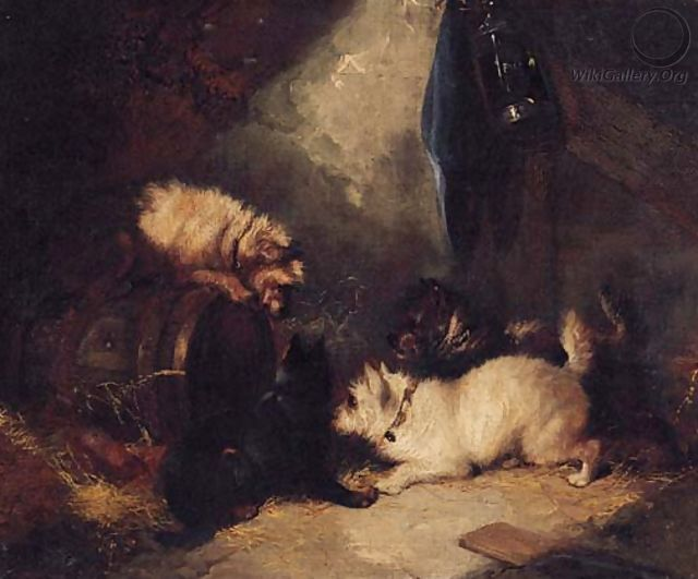 Terriers ratting in a Barn - George Armfield