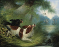 Spaniels putting up a Duck - George Armfield