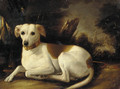 A whippet in a wooded landscape - French School