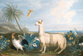 A Lama, a Dodo and other exotic Birds in a Tropical Landscape - French School