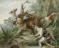 A stag attacked by hounds - French School