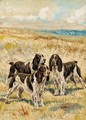 Champion Winning Number of Solway, Champion Dry Toast and Champion Nimble of Hamsey, three springer spaniels in a landscape - Frederick Thomas Daws