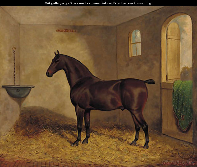 Lord Bath, a bay horse in a stable - Frederick Albert Clark