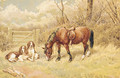 Spaniels and a Horse resting beside a Gate - Frank Paton