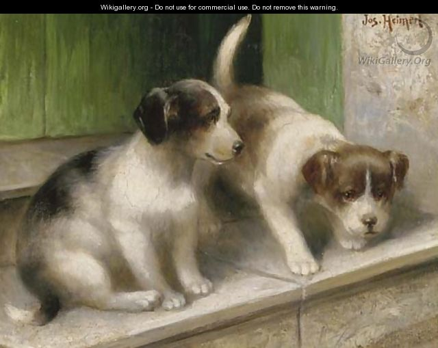 Mischevious puppies - Josef Heimerl