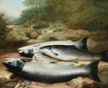 Three Salmon on a Rocky Riverbank - John Russell