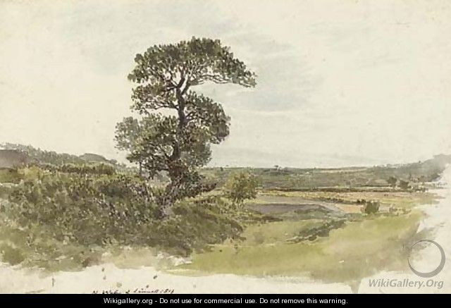 An extensive landscape in North Wales - John Linnell