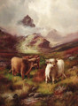 Highland cattle in a mountainous landscape - John Morris