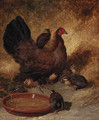 A hen and chicks - John Frederick Herring Snr