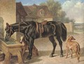 A farmer's hack and greyhounds - John Frederick Herring Snr