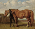 A chestnut mare with her foal in a paddock - John Frederick Herring Snr