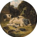 Berkshire saddlebacks with pigs and piglets in a farmyard - John Frederick Herring, Jnr.
