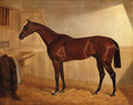 Lord Jersey's Bay Middleton in a Stable - John Frederick Herring Snr