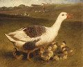 A Goose and Goslings - John Frederick Herring Snr