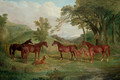 The Streatlam Stud, Mares and Foals - John Frederick Herring Snr