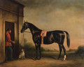 Vitellus, a black hunter, held by a groom, with a dog outside a stable - John Ferneley, Snr.
