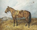 Punch, a saddled military pony, in a landscape - John Emms