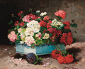 Geraniums in a ceramic container - Lonie Valmon