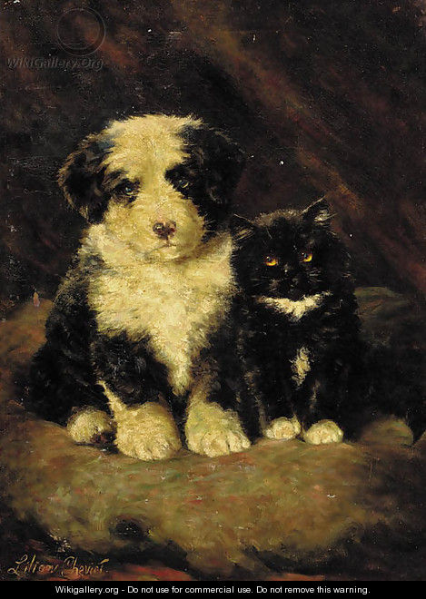 A sheepdog puppy with a kitten - Lilian Cheviot