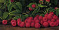 Raspberries - Levi Wells Prentice