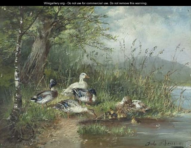 Ducks on a riverbank - Julius Scheuerer