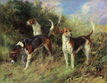 Dandy, Nigel and Sapphire - North Shropshire Foxhounds - Heywood Hardy