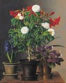 Camelias, amaryllis, hyacinth and violets in ornamental pots on a marble ledge - Johan Laurentz Jensen