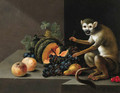A monkey with grapes, peaches, a melon and other fruit on a stone ledge - Johann Amandus Winck