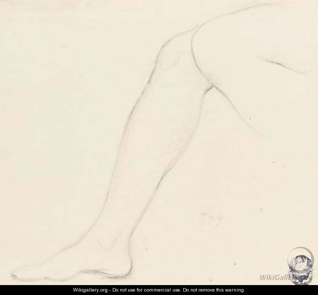 Study of a right leg with part of the left knee - Jean Auguste Dominique Ingres