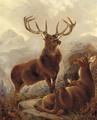 A stag with doe in a highland landscape - Robert Cleminson