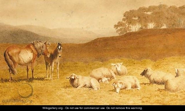 Sheep and ponies resting in an extensive landscape - Robert Hills