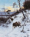 Moose in a winter landscape - Richard Friese