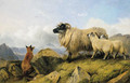 Highland Folk - Two Lambs, a Ewe and a Fox - Richard Ansdell