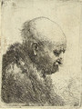 A bald-headed Man in Profile right - Rembrandt Van Rijn