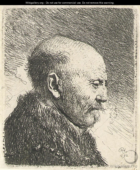 Bald-headed man in Profile Right; The Artist