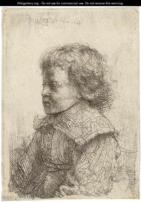 Portrait of a Boy, in Profile - Rembrandt Van Rijn