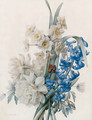A Bunch of Flowers including Bluebells, Daffodils, and an Admiral Butterfly - Pierre-Joseph Redouté