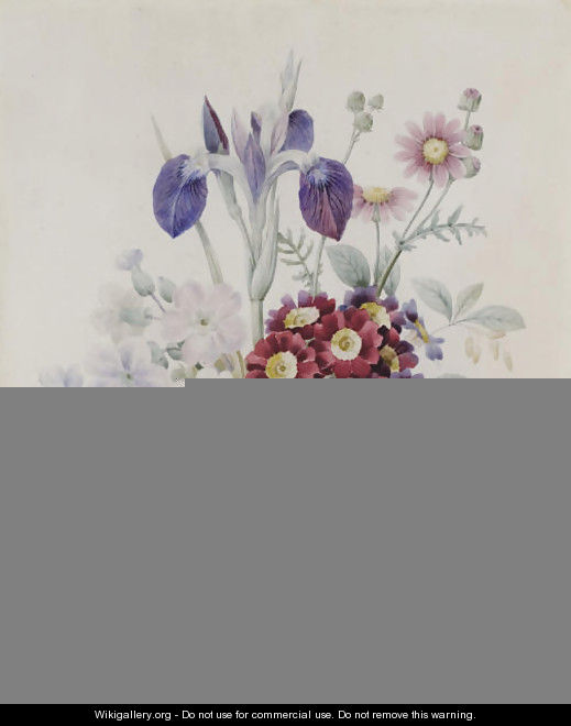A bunch of flowers with a blue iris and some red auriculae - Pierre-Joseph Redouté