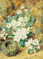 Still-life of a bird's nest with apple blossom, primulas and anemonies - Thomas Collier