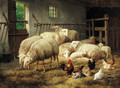 A stable with sheep and chickens - Theo van Sluys