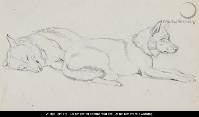 Study of huskies - Sir Edwin Henry Landseer