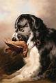 Retriever and Woodcock - Sir Edwin Henry Landseer
