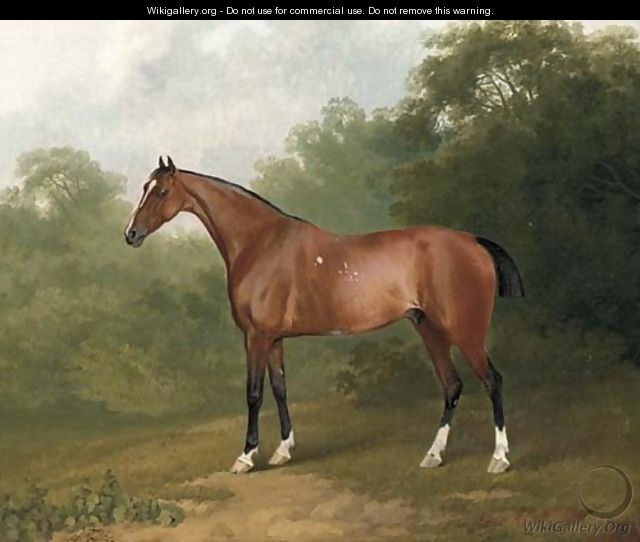 A bay horse in a wooded landscape - Sawrey Gilpin