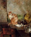 Three cats in the kitchen - Minna Stocks