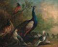 A Peacock, Doves and Pheasants by a Lake - Marmaduke Cradock