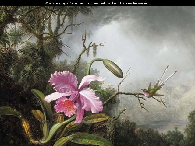 Orchid and Hummingbird, After a Storm - Martin Johnson Heade
