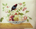 Still life with a Bee-eater perched a branch arranged in a Delft bowl with cherries, pears, apples, peaches and figs - Maria Sibylla Merian
