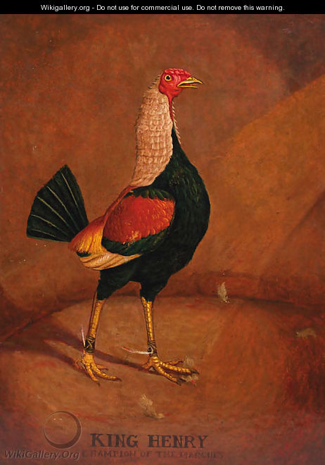 King Henry, a fighting cock - (after) Henry Alken