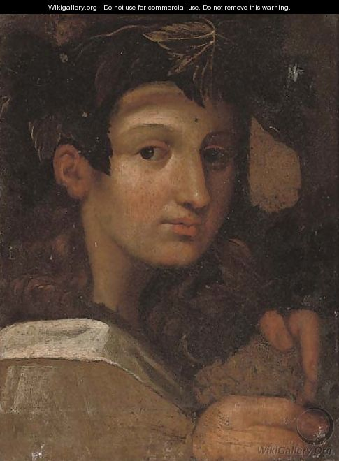 Head of the young Bacchus - Girolamo Francesco Maria Mazzola (Parmigianino)