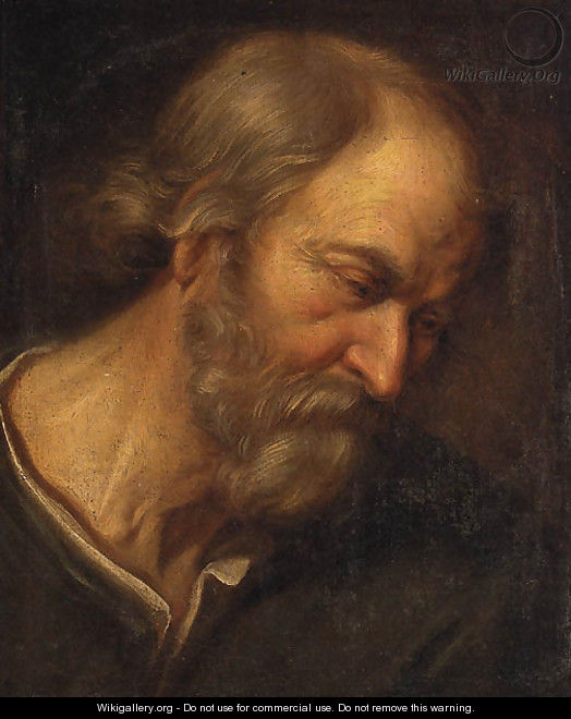 An old Man, head and shoulders - Giovanni Francesco Guercino (BARBIERI)